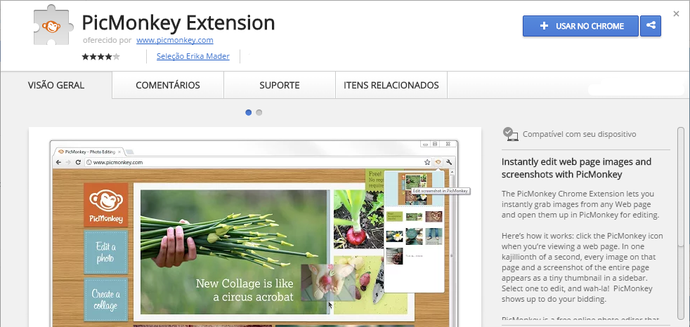 PicMonkey Extension Chrome Web Store extensão chrome