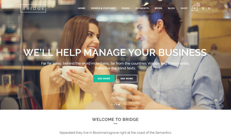 tema wordpress seo bridge