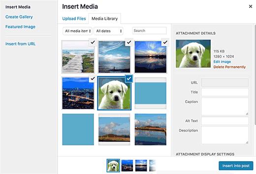 Como corrigir problemas comuns de imagem no WordPress